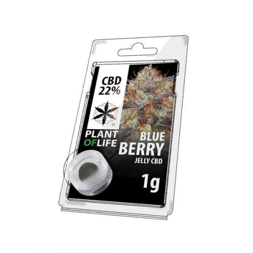 Blue Berry Hasch-cbd-natural