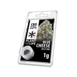 Cheese-Hasch-cbd-natural