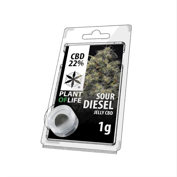 Sour Diesel Hasch-cbd-natural