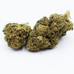 amneszia haze-Blüten-cbd-natural