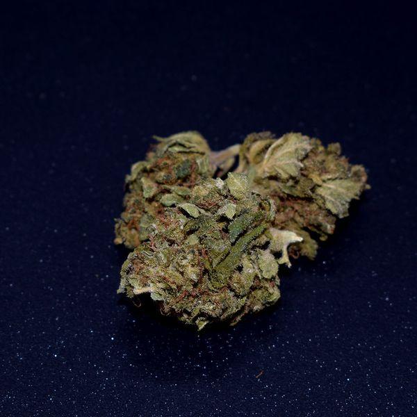 Mango-Kush-CBD-Blüten-cbd-natural