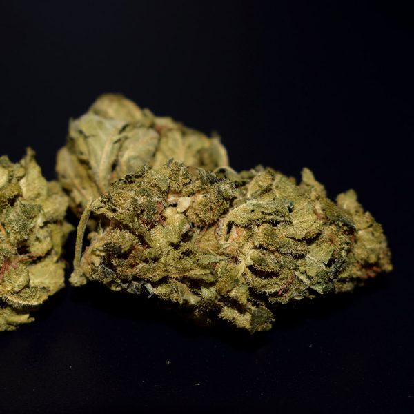 Black Domina 6%CBD-natural.de