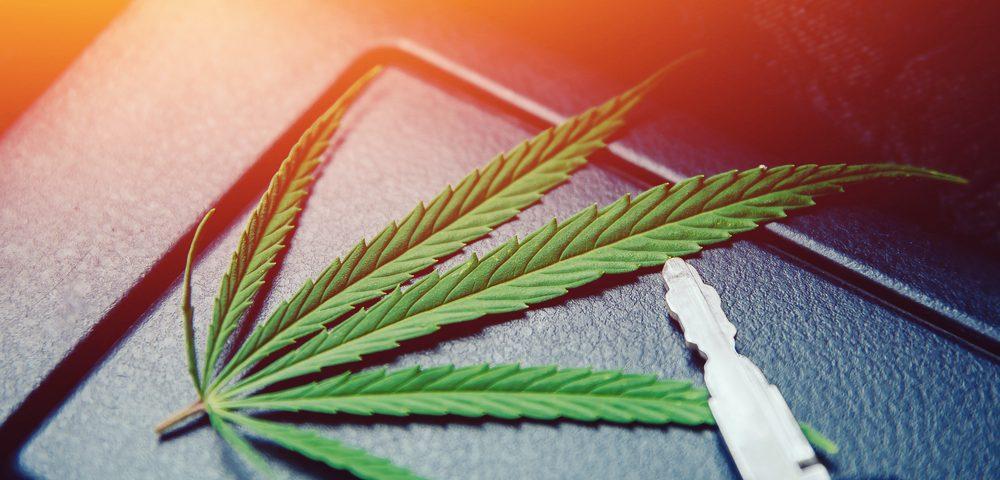 Wie Marihuana das Automobilgeschäft erobern könnte- CBD-natural.de
